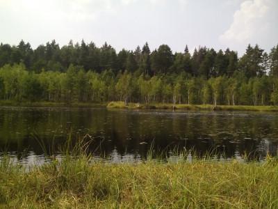 Звенигородская биостанция МГУ и карьер Сима