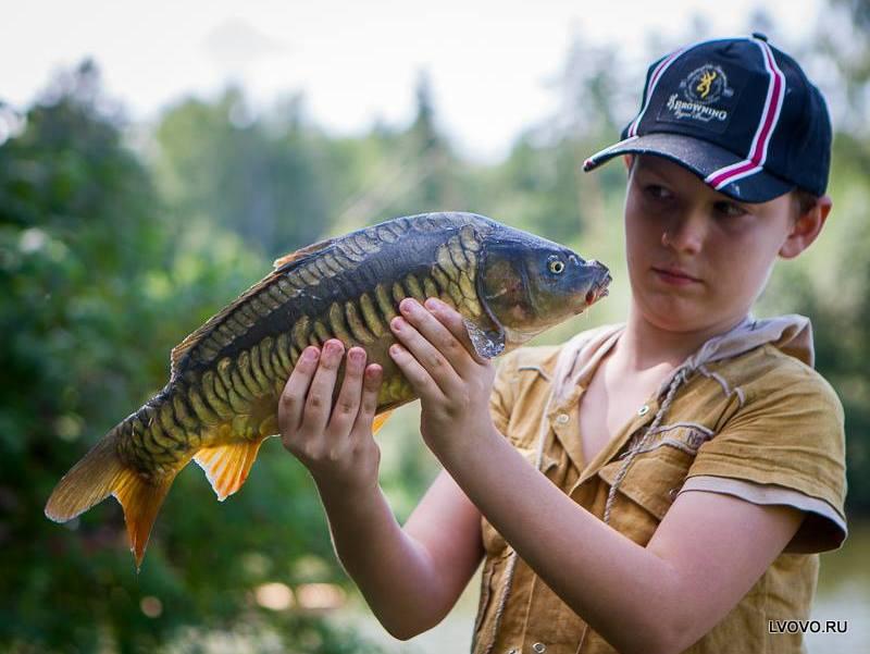 Рыболовная база «Львово»