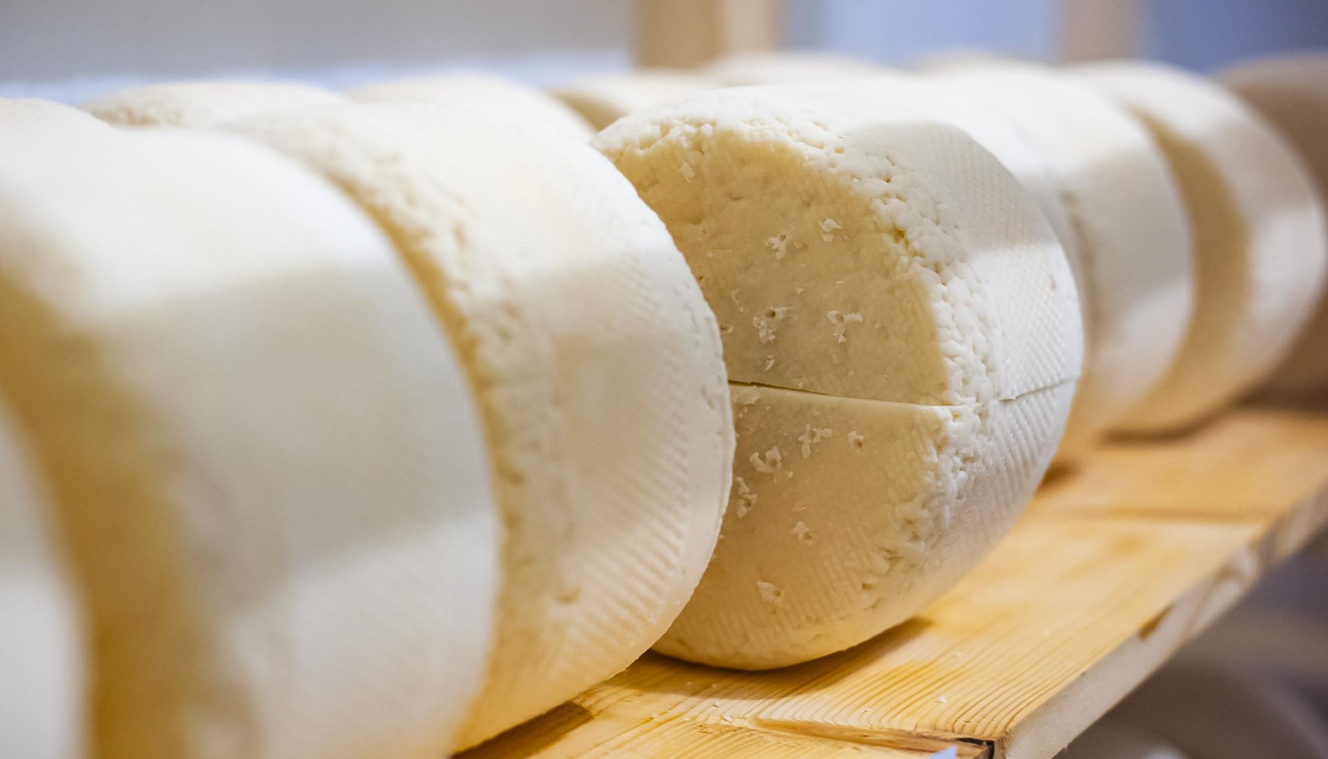 Мамонтово, Мамонтовская сыроварня