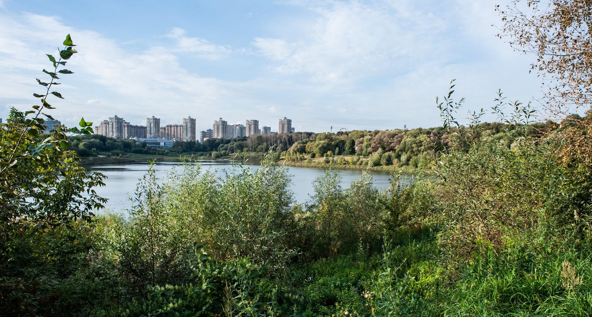 Городском парк в Раменском