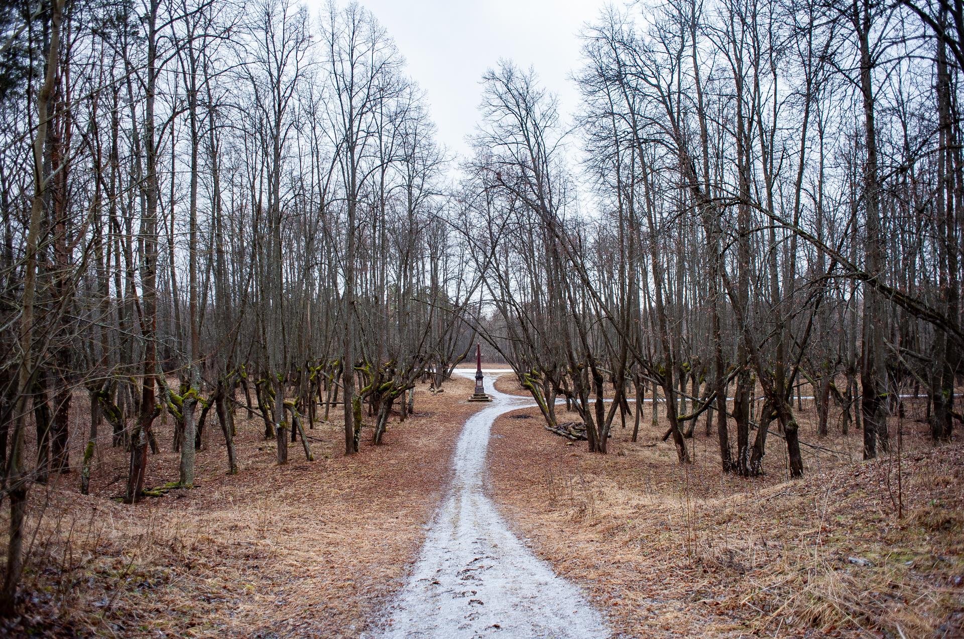 Ярополец, Усадьба Чернышевых и парк усадьбы