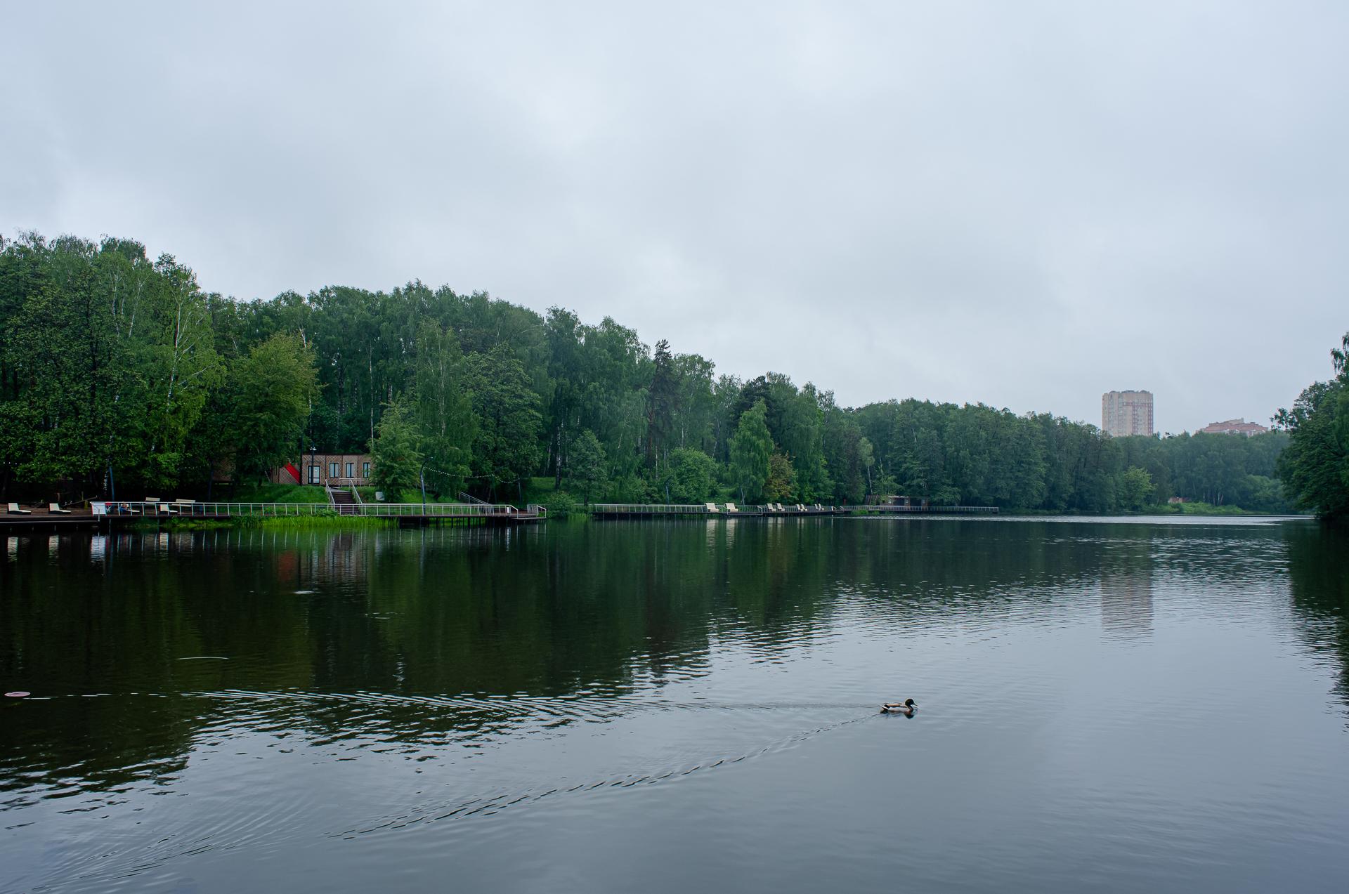 Балашиха, парк Пехорка, река Пехорка