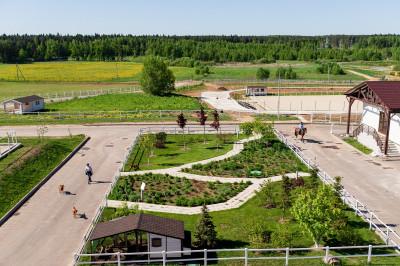 Maxima Park