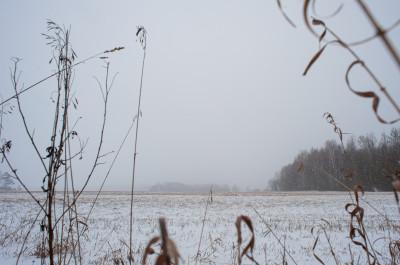 Зимние виды аномальной зоны в Щёлково