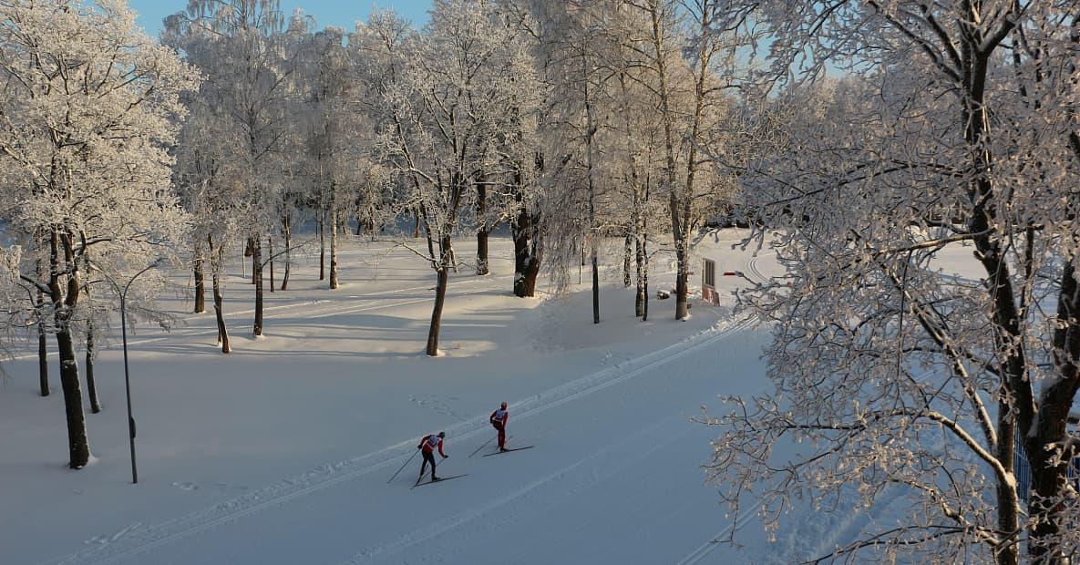Лыжные трассы парка-отеля «Пересвет»