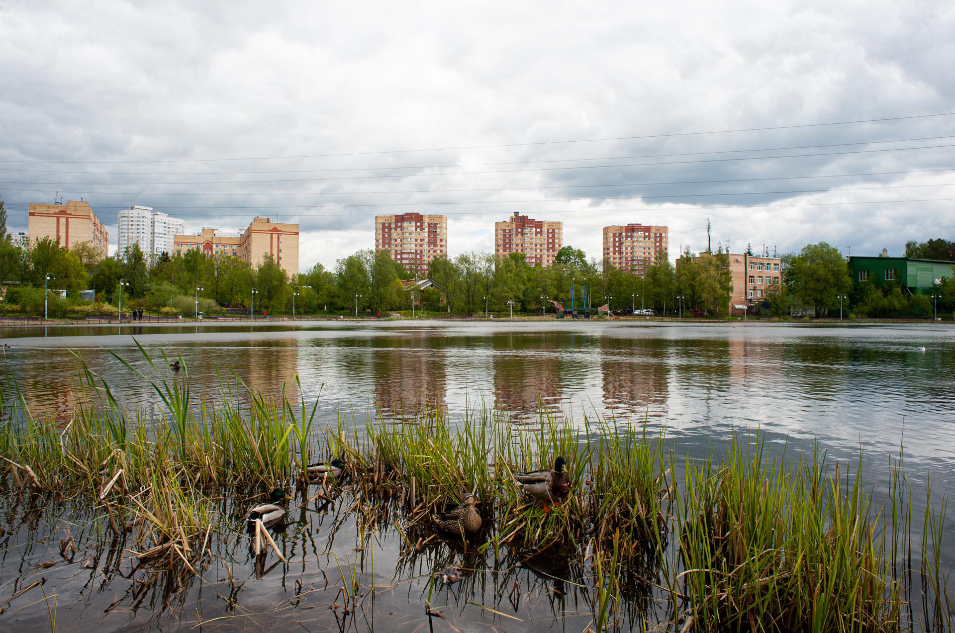 Пушкино, Травинское озеро
