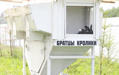 Экоферма «Александровский спас»