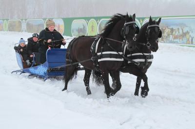 Национальный конный парк «Русь»