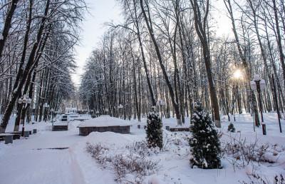 Дмитров, Парк «Березовая роща»