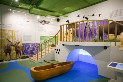 Детский центр «Экспонариум». Раздел «Природа»