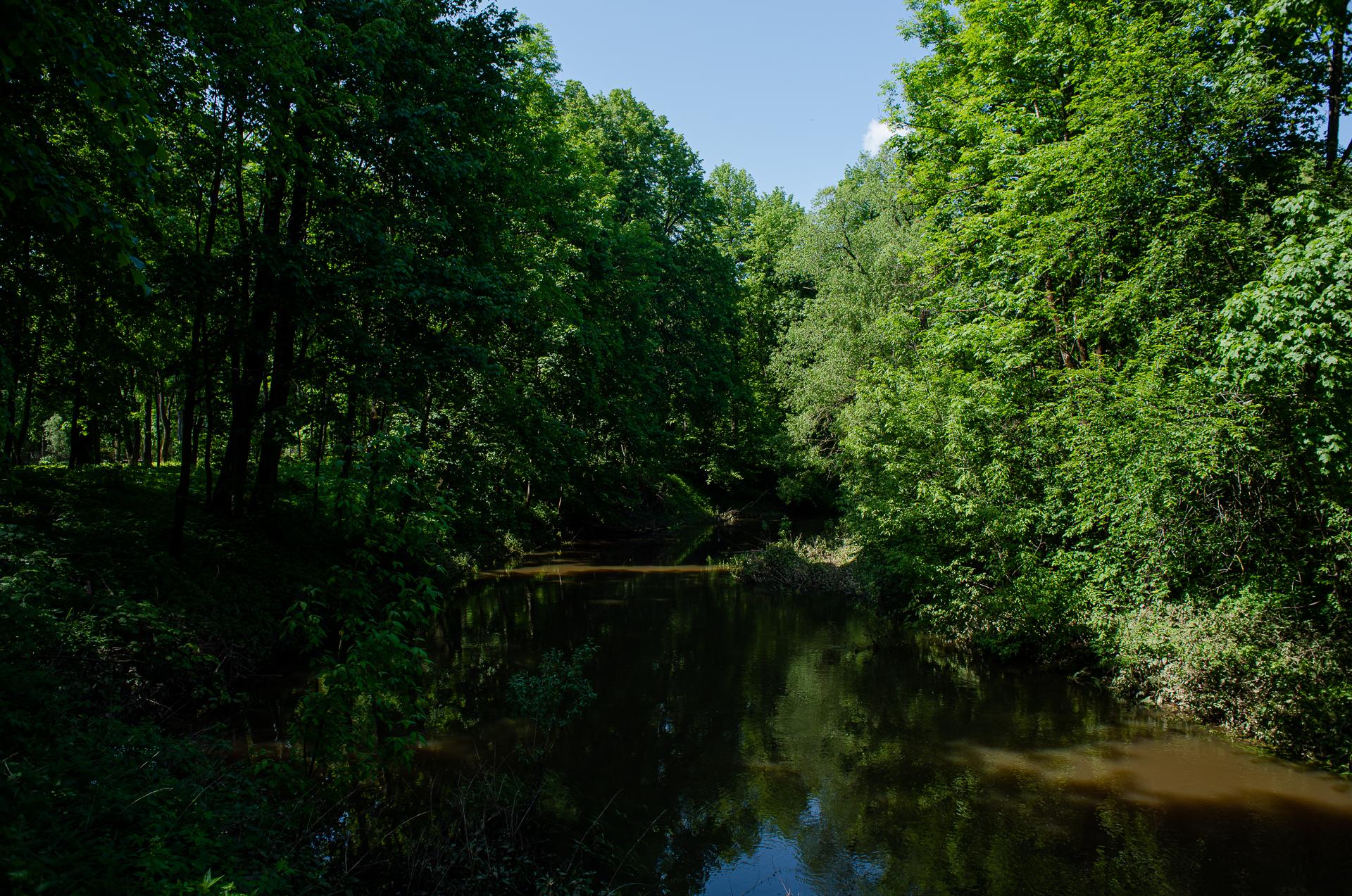 Лотошино, Лотошинский парк культуры и отдыха, р. Лобь