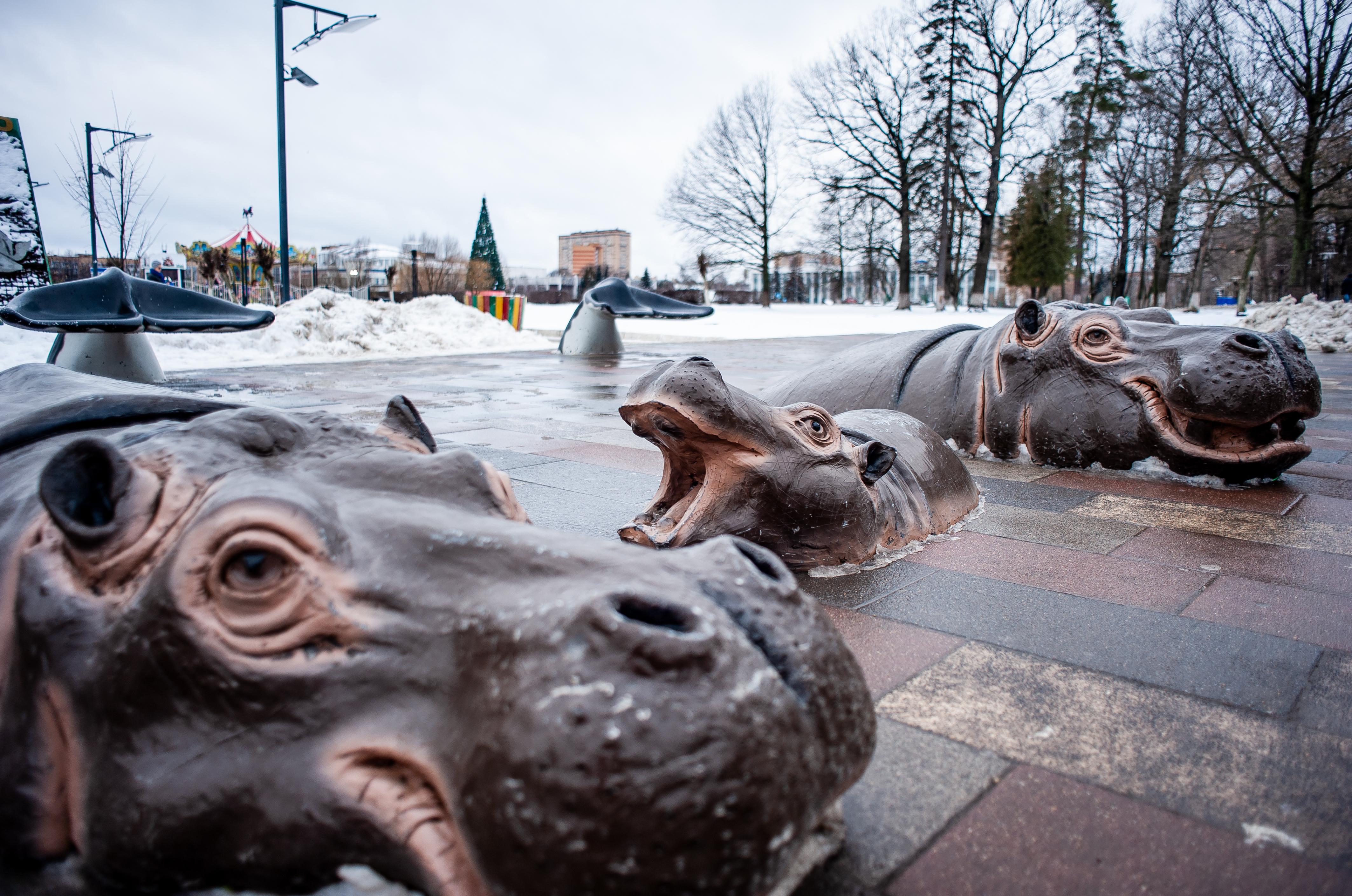 Зимние виды города Одинцово