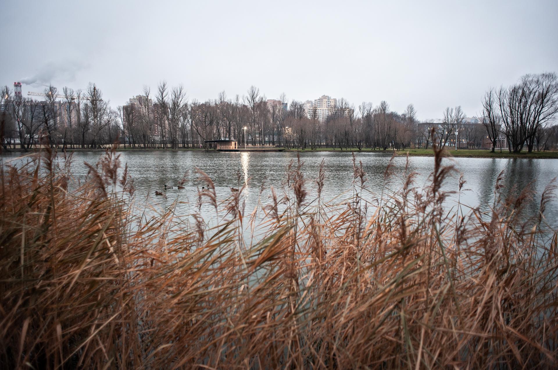 Реутов, Фабричный пруд
