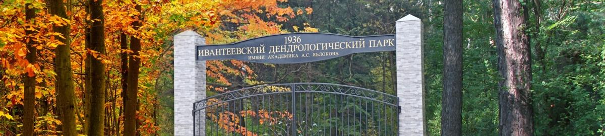 Ивантеевский дендрологический парк имени Александра Яблокова