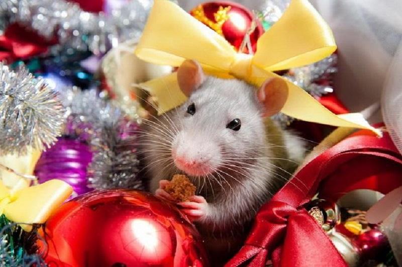 Праздник «Мышкины посиделки»