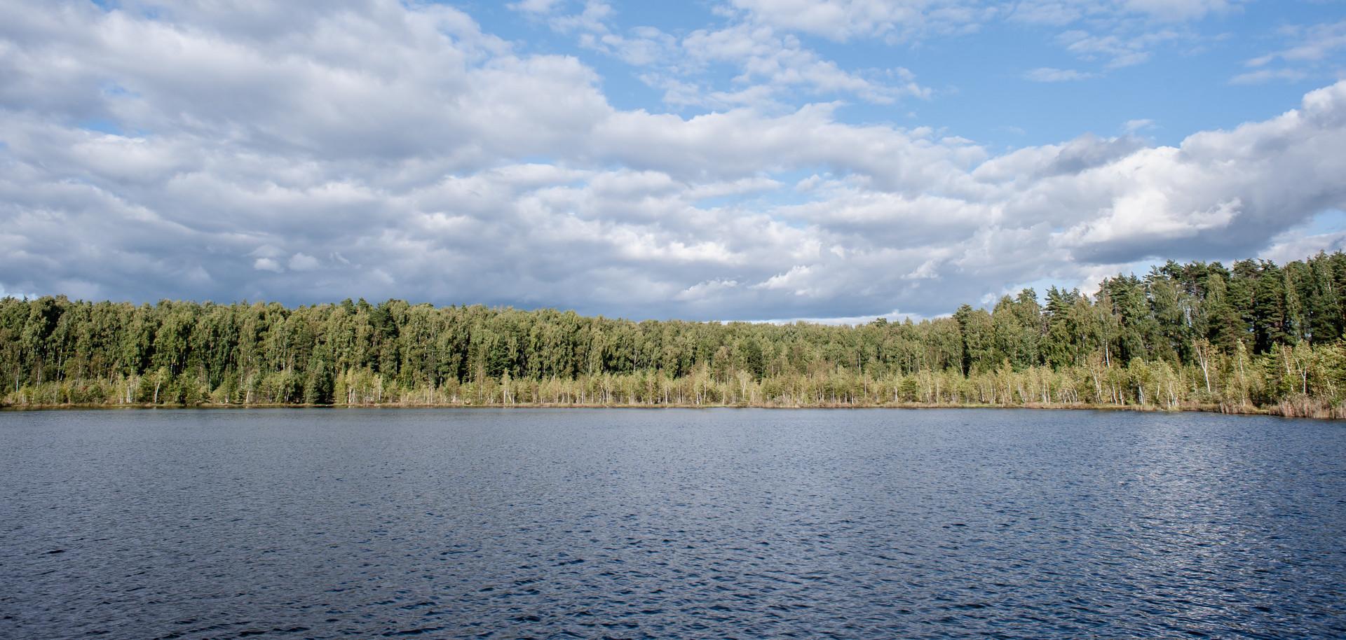 Озерный лесопарк. Озеро Бабошкино