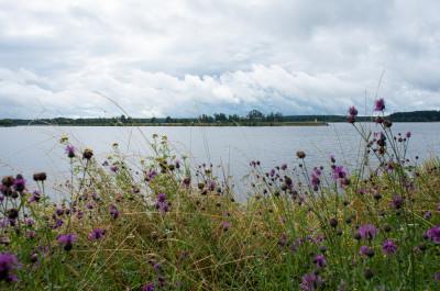 Дубна, Волга-Иваньковское водохранилище