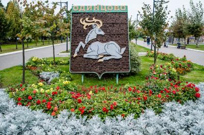 Центральный городской парк в Одинцово