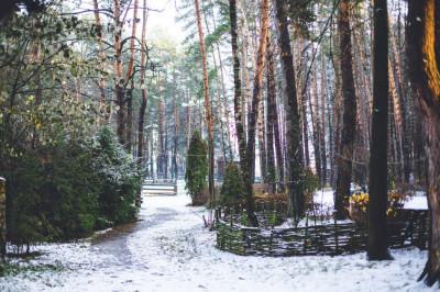 Парк-отель «Дракино» в зимний период