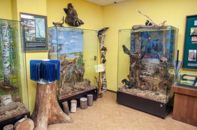 Историко-краеведческий музей в Балашихе