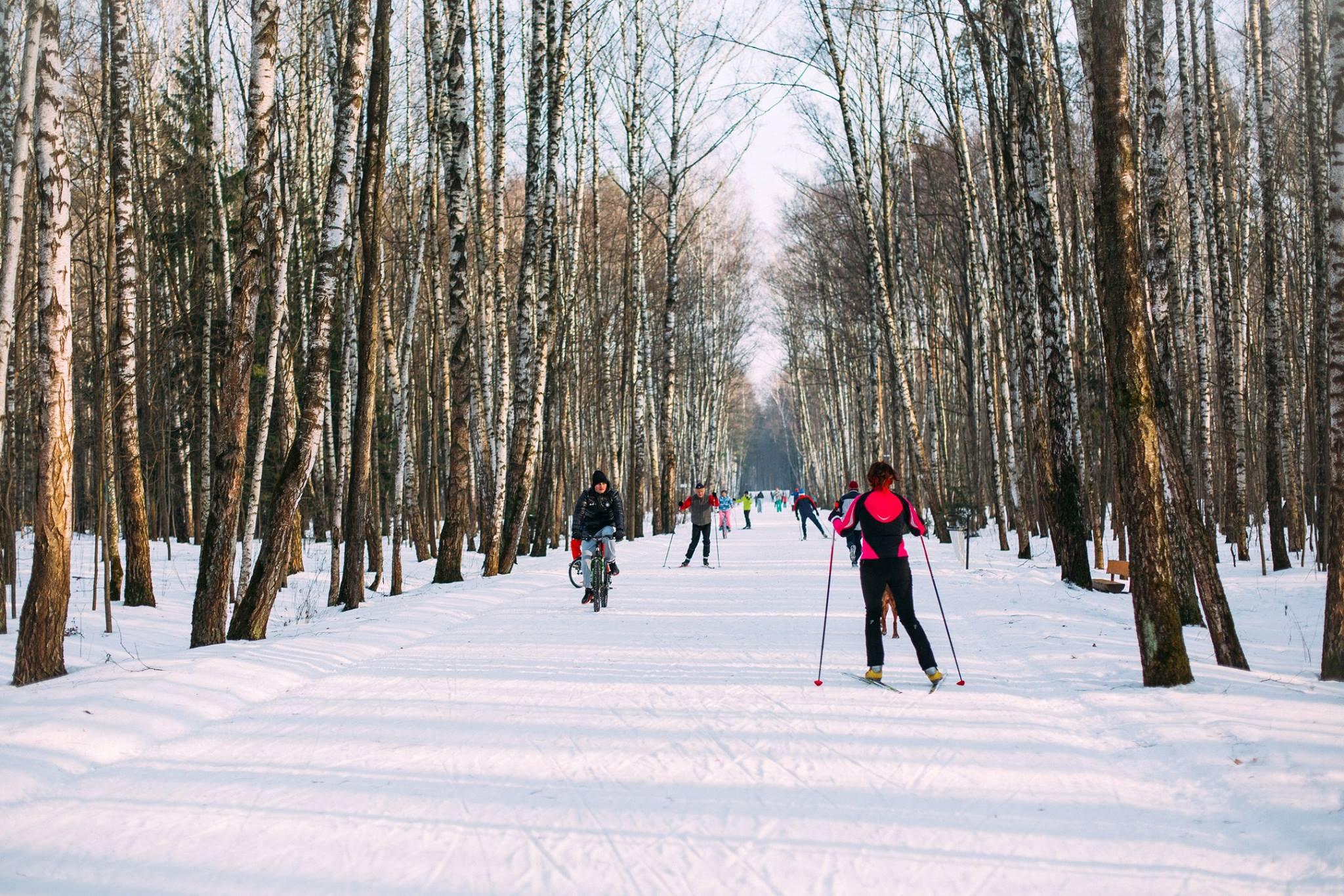 Лыжная трасса в Мещерском парке