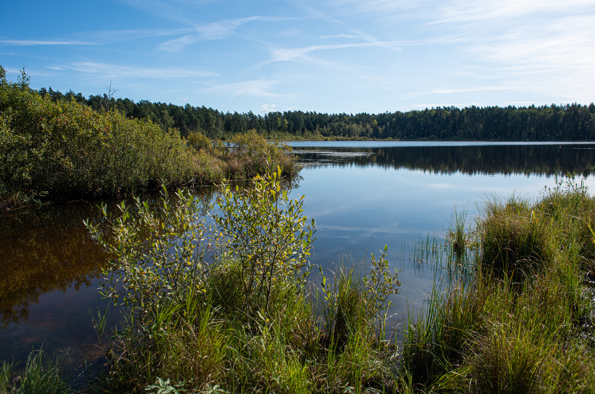 Щёлково, Чёрное озеро