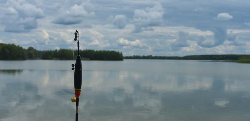 Рыбалка на прудах  Егорьевского рыбокомбината