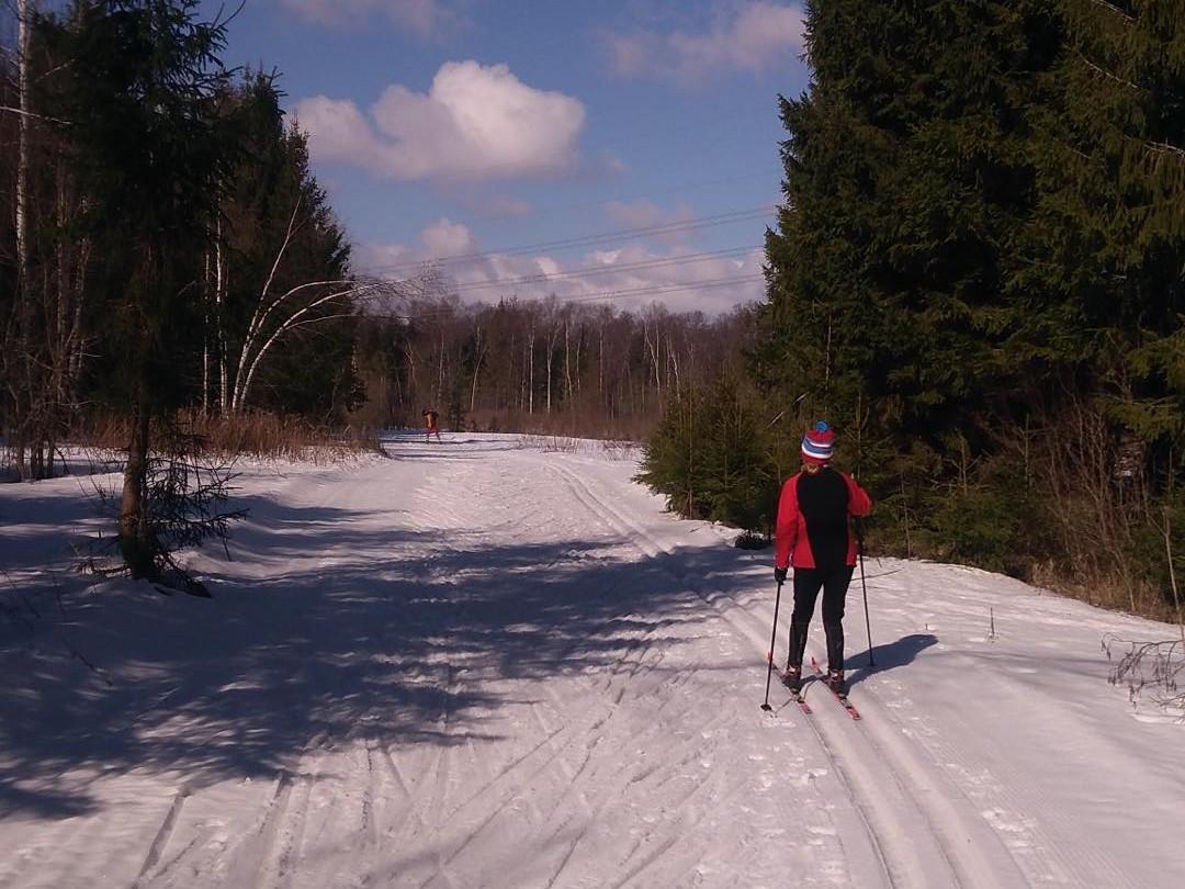 Лыжный клуб «ГАБО»
