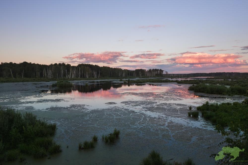 Национальный парк «Лосиный Остров». Яузский водно-болотный комплекс