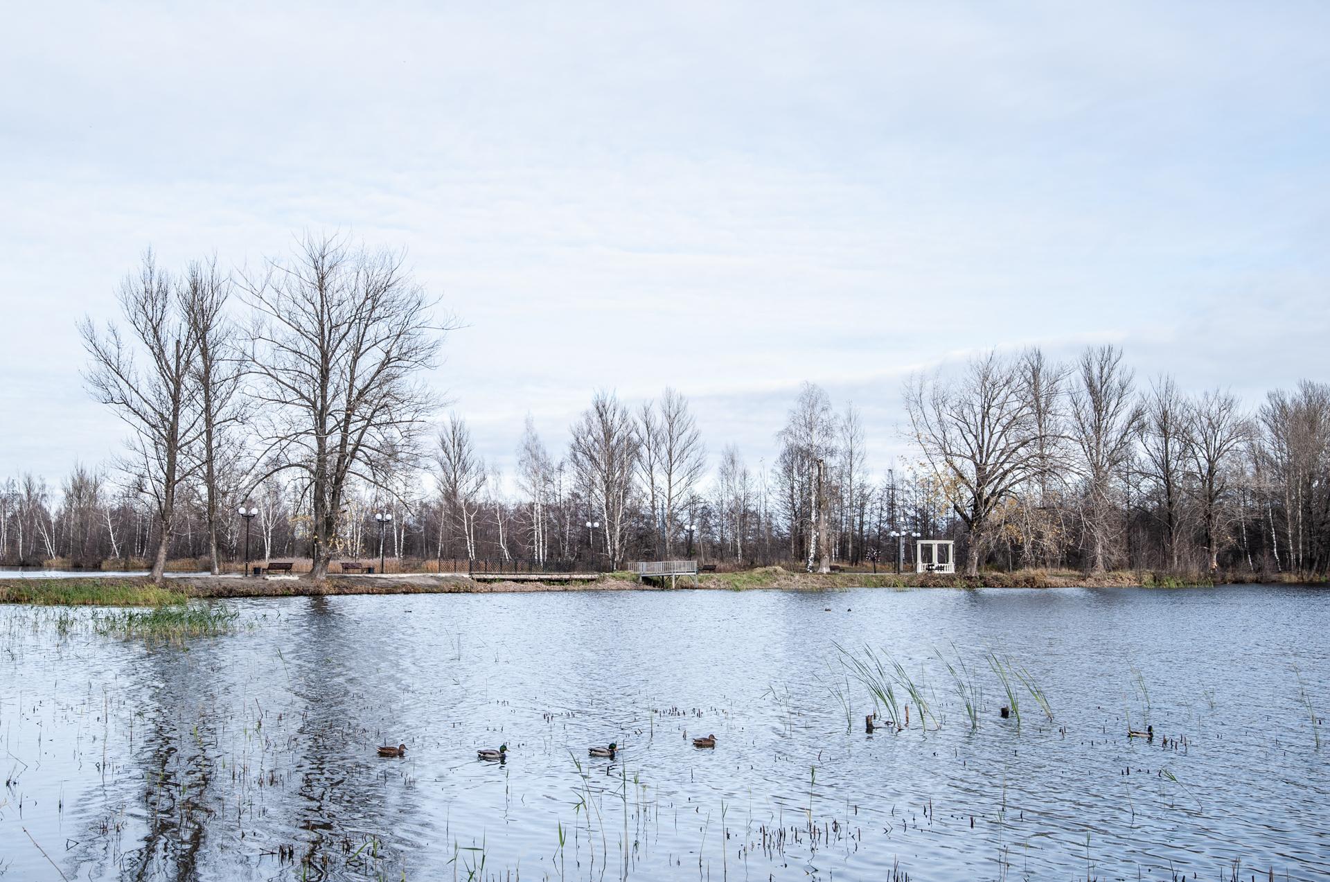Электрогорск, озеро
